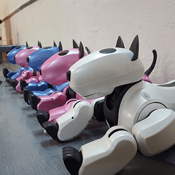 сезонно намаление на обувки балканско бижу оферти 2020